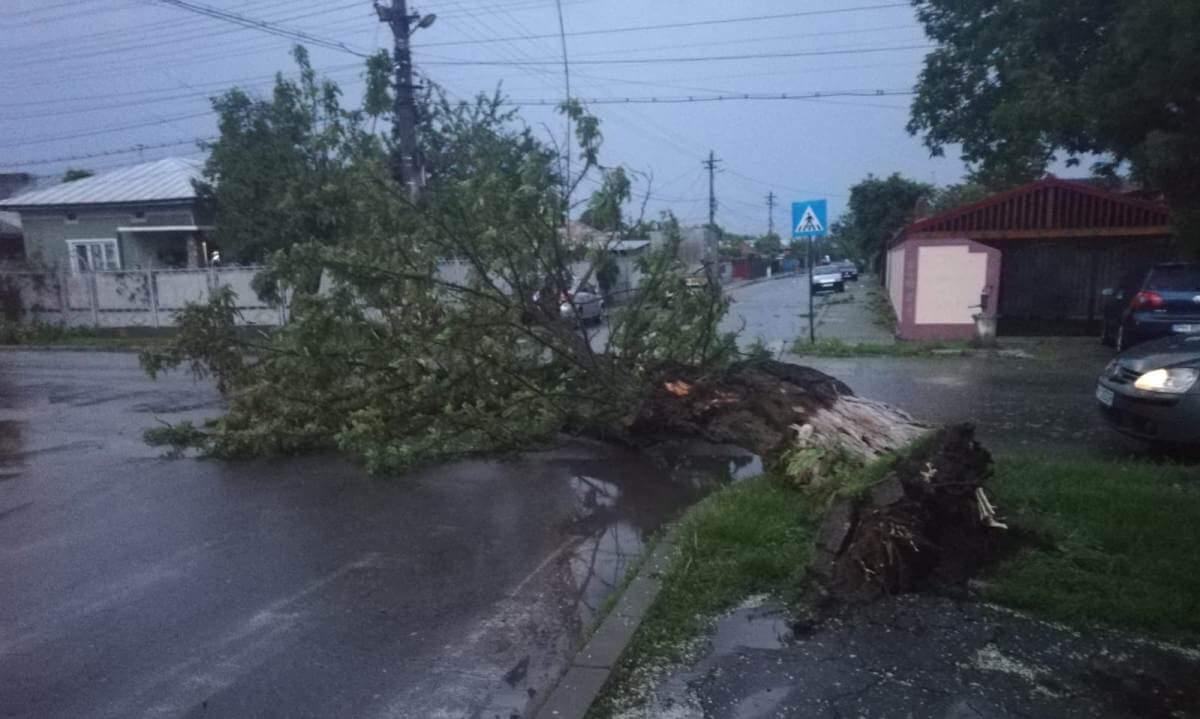 Vijelii și ploi, în toate regiunile, până marți seară. ISU Prahova a mobilizat peste 150 de pompieri, pe durata avertizării meteo